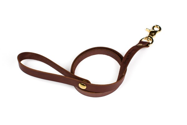 leash-brown-10-Edit