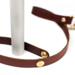 leash-brown-59-Edit